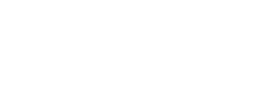 Chip Systems – IT Services
